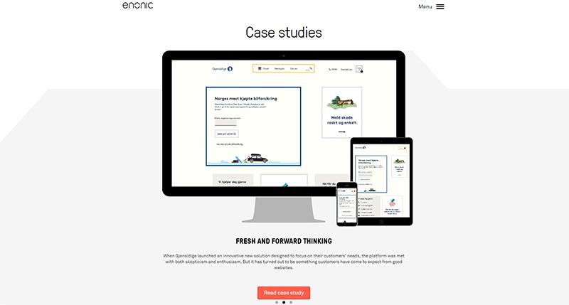 Enonic1_800